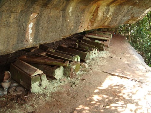 Several log coffins lined up like ramshackle piano keys