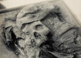 Tycho Brahes jordiske rester som de så ud ved udgravningen i 1901