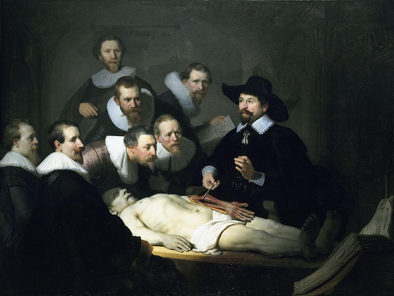 Anatomy Lesson 5 Rembrandts The Anatomy Lesson Of Dr Nicolaes