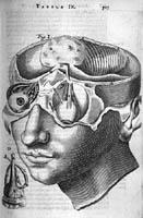 Anatomisk ill. (1673)